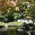 写真: 諏訪神社005