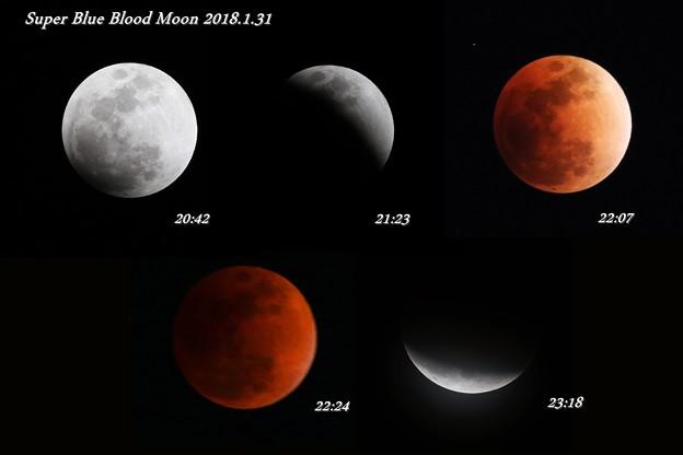写真: Super Blue Blood Moon 2018