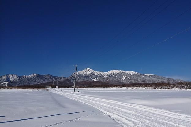 碧空白雪無人鳥