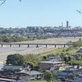 Photos: 多摩川増水