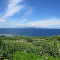 写真: 西表島