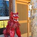 Photos: きょうのシ-サ-