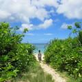 Photos: 海を見に行く