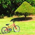 UFOと自転車
