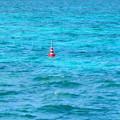Photos: 海とコ-ン