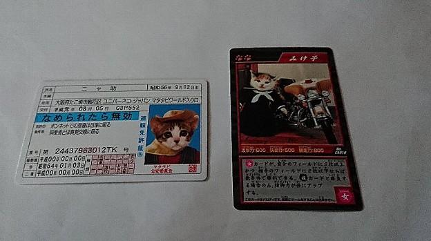 なめんなよ カードコレクション2