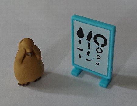 Photos: ペンギン身体測定