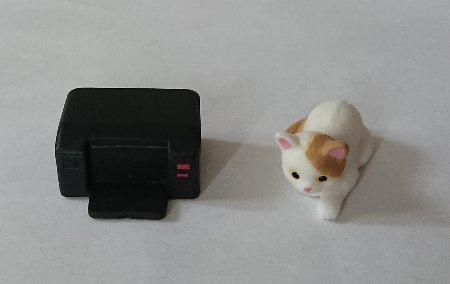 Photos: 猫とプリンター