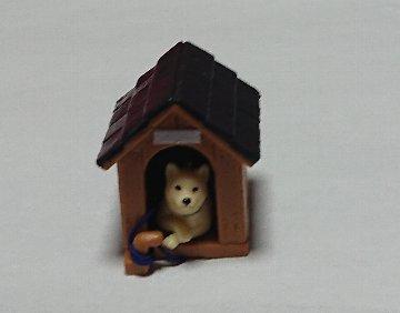 柴犬と犬小屋