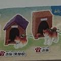 Photos: 柴犬と犬小屋