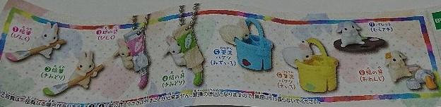 Photos: お絵描きうさぎ Colorful