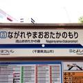写真: 流山おおたかの森駅 Nagareyama-otakanomori Sta.