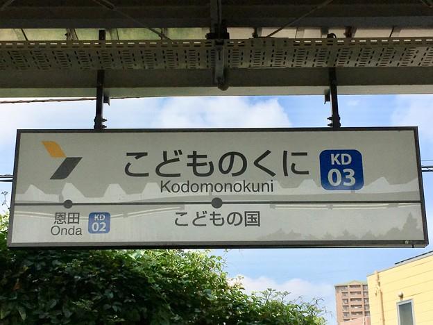 こどもの国駅 Kodomonokuni Sta.