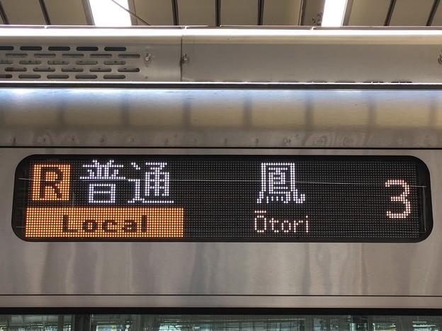 JR阪和線 普通:鳳行き