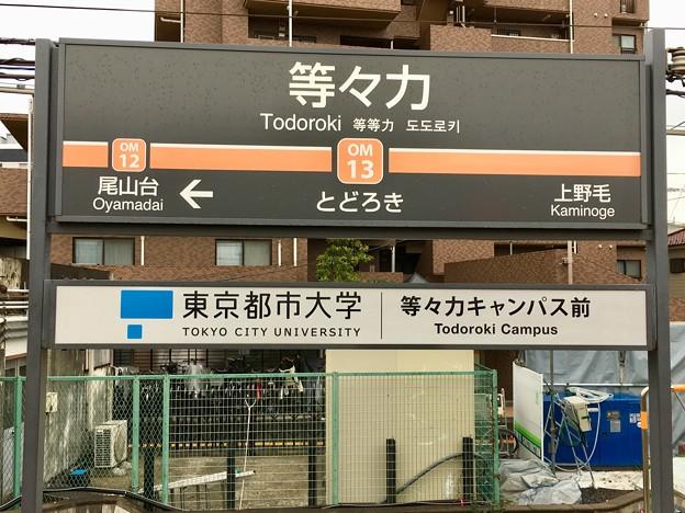 等々力駅 Todoroki Sta.