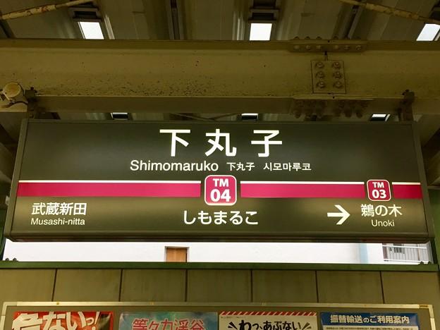下丸子駅 Shimomaruko Sta.