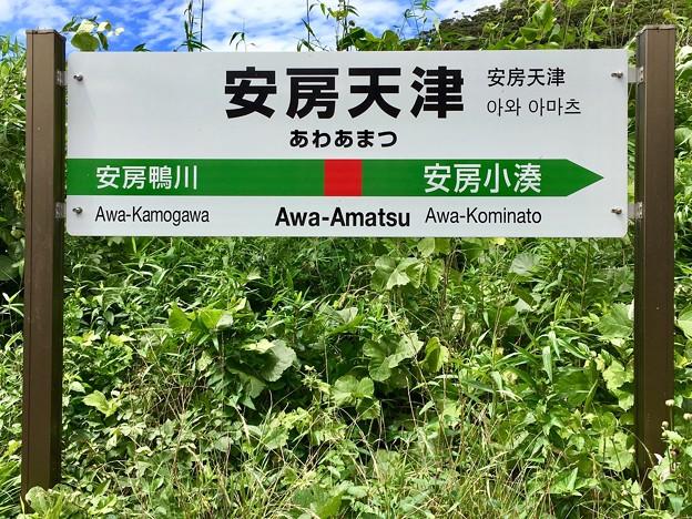 安房天津駅 Awa-Amatsu Sta.