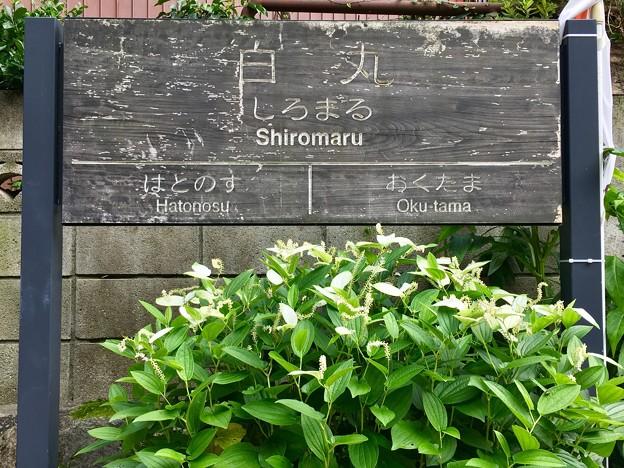 白丸駅 Shiromaru Sta.