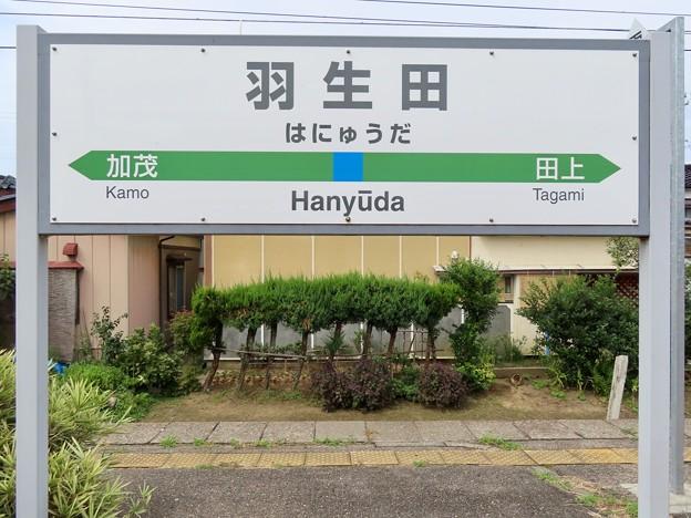 羽生田駅 Hanyuda Sta.