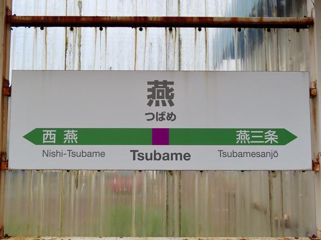 燕駅 Tsubame Sta.