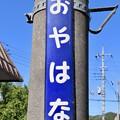 親鼻駅 OYAHANA Sta.
