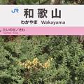 Photos: 和歌山駅 Wakayama Sta.