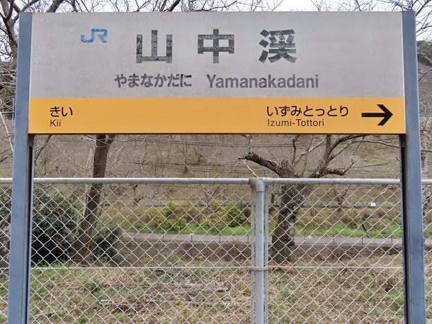 Photos: 山中渓駅 Yamanakadani Sta.