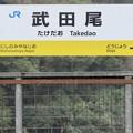 Photos: 武田尾駅 Takedao Sta.