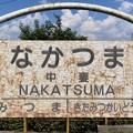 中妻駅 Nakatsuma Sta.