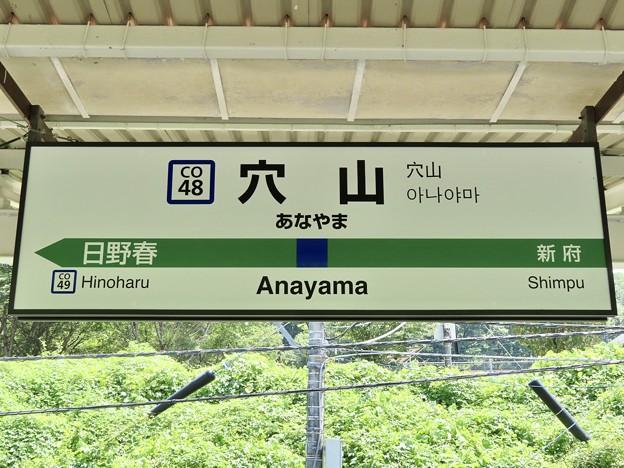 穴山駅 Anayama Sta.