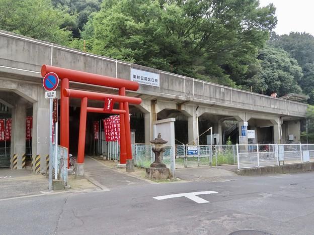 栗林公園北口駅