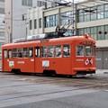 Photos: 伊予鉄道モハ50形