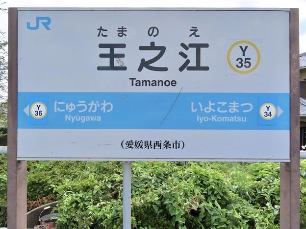 玉之江駅 Tamanoe Sta.