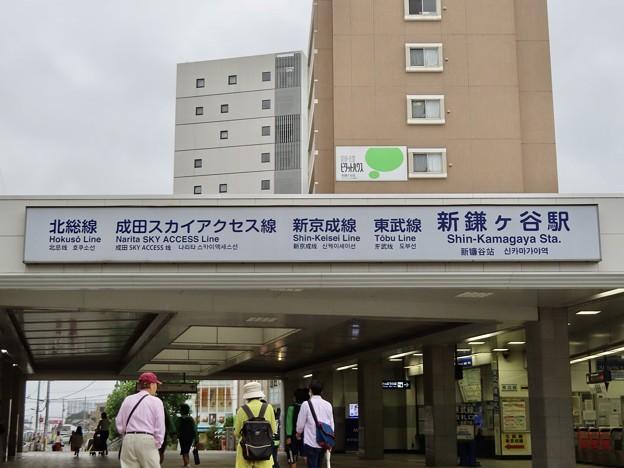 新鎌ヶ谷駅 Shin-Kamagaya Sta.