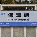 Photos: 保津峡駅 Hozukyo Sta.