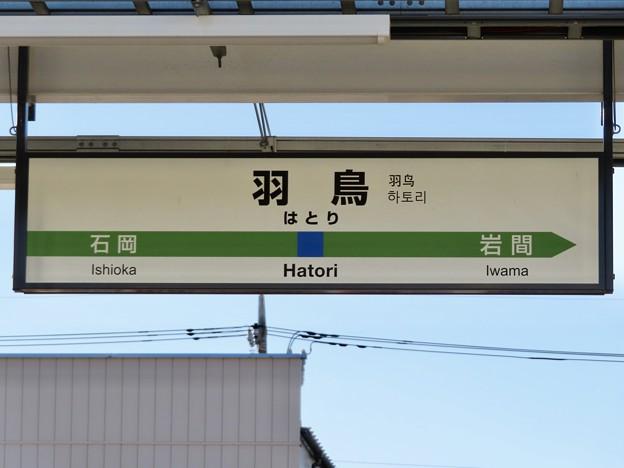 羽鳥駅 Hatori Sta.