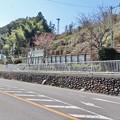 Photos: 原田駅