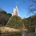 Photos: 雪吊り32009春小石川後楽園