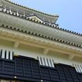 Photos: 14051305_岐阜城