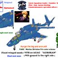 【腕脚ユニット削除】 VFH-10G 複座型 オーロラン