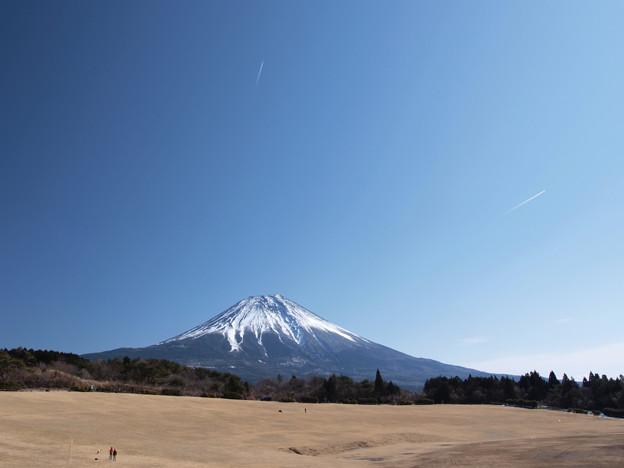 富士山から飛び出した?