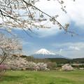 写真: 長閑な春の日。
