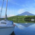 写真: 朝のヨット。