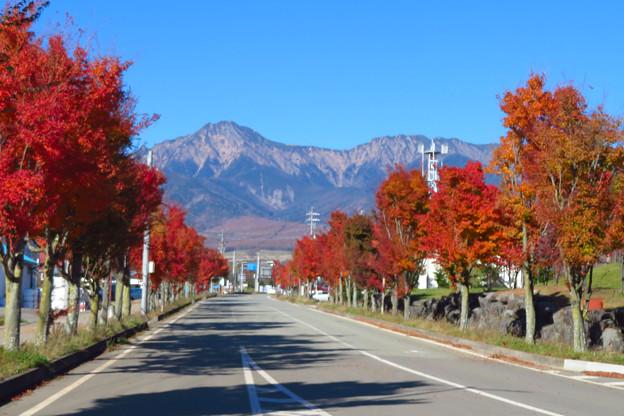 野辺山駅前通りの色。