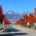 写真: 野辺山駅前通りの色。