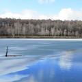 写真: 半分氷る、冬はじめ。