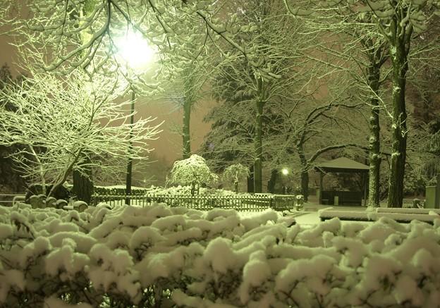 雪夜の公園。