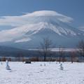 Photos: 雪だるま集まれ~。