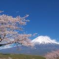 Photos: 桜の丘からの見晴らし好きかな。