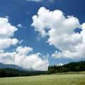 Photos: 雲わくそば畑。